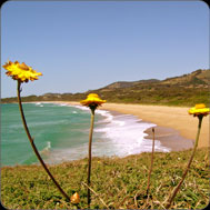 Coffs Harbour Nightclubs & Bars